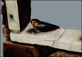 Detail Showing Lone Baby Swallow on Window Ledge