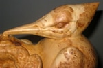 woodpecker-sm