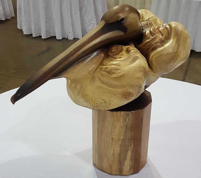 emergence-pelican-650px